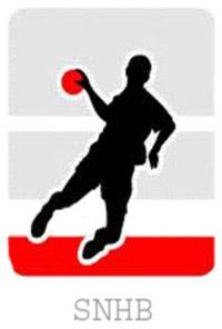 Logo SECTION NÉRONDAISE HB