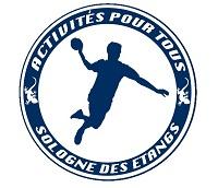 Logo HANDBALL SOLOGNE DES ETANGS