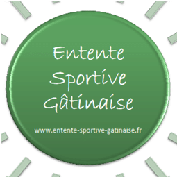 Logo ES GATINAISE