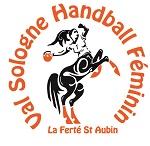 Logo VAL SOLOGNE HANDBALL FEMININ